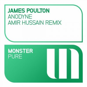 James Poulton - Anodyne (Amir Hussain Remix) [Monster Pure (MONSTER TUNES)]