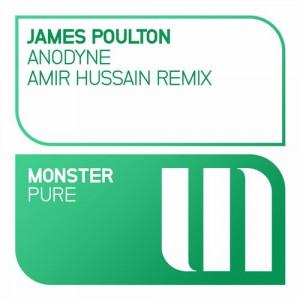 James Poulton - Anodyne (Amir Hussain Remix) [Monster Pure (MONSTER TUNES)]