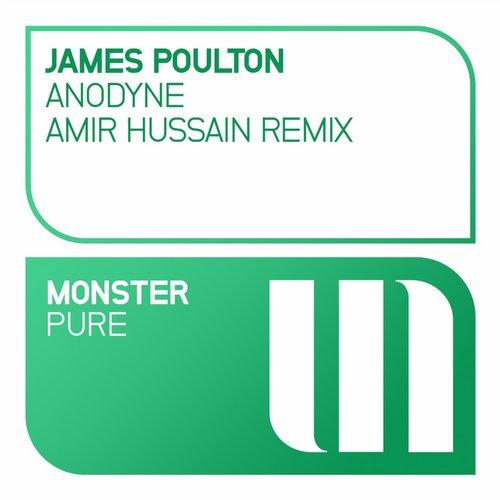 James Poulton - Anodyse
